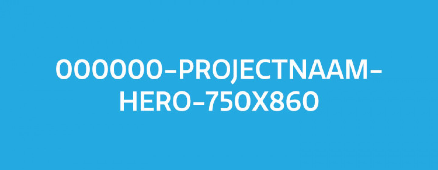 000000-Projectnaam-Hero-750x860