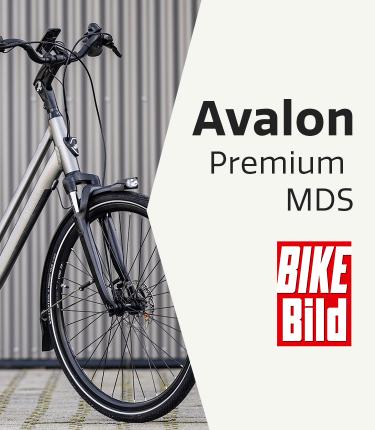 210416-Avalon Premium Mds Bike Bild-750x860