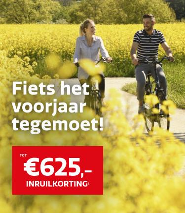 210501-Hallo-Nijmegen-ActieHero-750x860