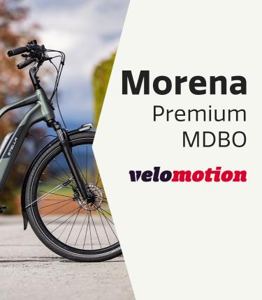 2105-Morena-Premium-MDBO-750x860