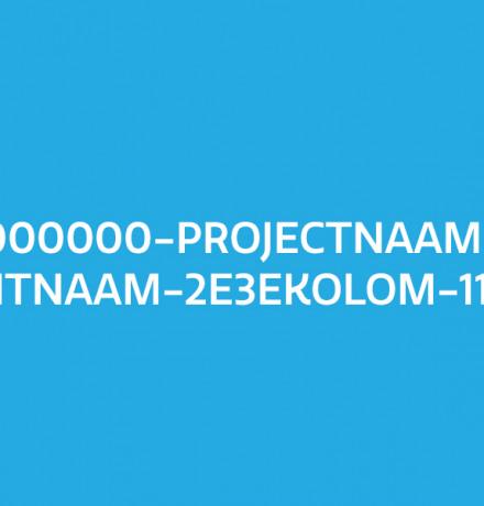 000000-Projectnaam-Contentnaam-2e3ekolom-1120x600
