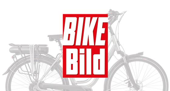 210416-Avalon Premium Mds Bike Bild Overzicht - 1120x600