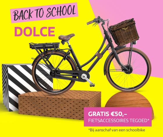 2108-Schoolbikes-Dolce-2e3ekolom-1120x860