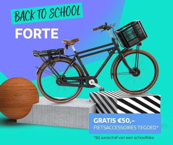 2108-Schoolbikes-Forte-2e3ekolom-1120x860