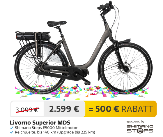DE_210920-Feestmaand-Ebikes-2e3ekolom-1120x860---Livorno_DARK-GREY