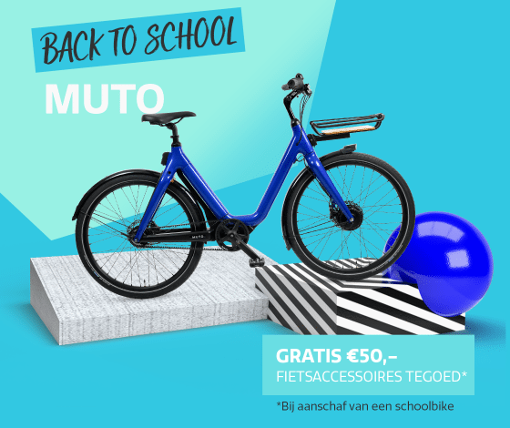 2108-Schoolbikes-Muto-2e3ekolom-1120x860